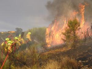 BRIF de La Iglesuela en ataque directo en un incedndio en la provincia de Salamanca